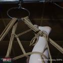 DVPX0660 copy